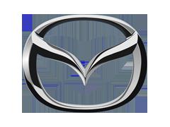 Volkswagen komplektacija pagal VIN