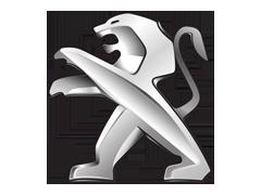 Peugeot komplektacija pagal VIN
